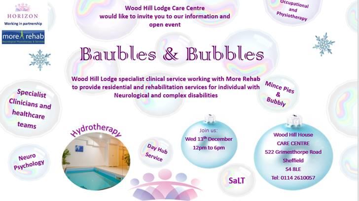 Baubles and Bubbles Horizon 05122017